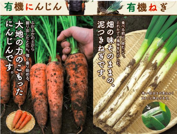 パルシステム お試しセット 有機野菜